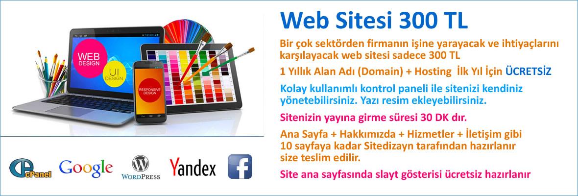 En iyi e-ticaret sitesi yapan firmalar