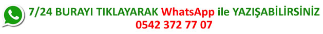 Whatsapp ile Yazışma
